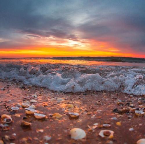 море закат
